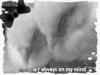u r always on my mind