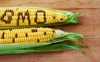 Genetically modified crops!